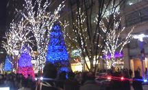 夜景♪_f0141960_9465181.jpg