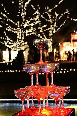 昭和記念公園クリスマスイルミネーション_f0030085_112822.jpg