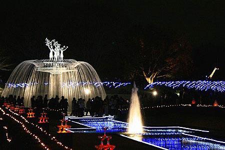 昭和記念公園クリスマスイルミネーション_f0030085_1128314.jpg