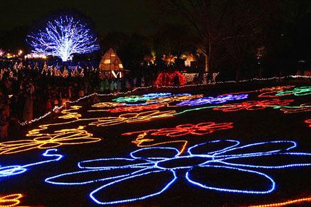 昭和記念公園クリスマスイルミネーション_f0030085_1129373.jpg