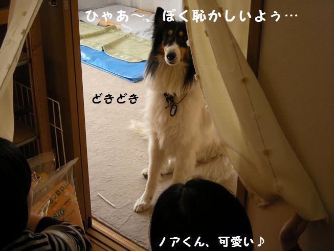 f0081100_15291237.jpg