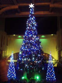 クリスマス_e0101312_095471.jpg