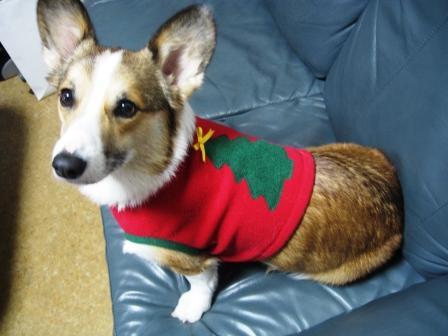 クリスマスパーティ ~JeJe Cafe_f0155118_23451735.jpg