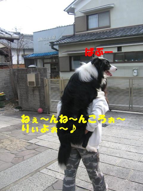 e0117976_13384393.jpg