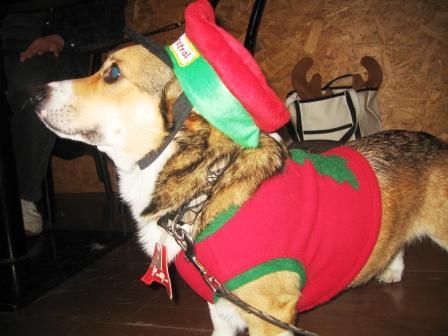 クリスマスパーティ ~JeJe Cafe_f0155118_6453335.jpg