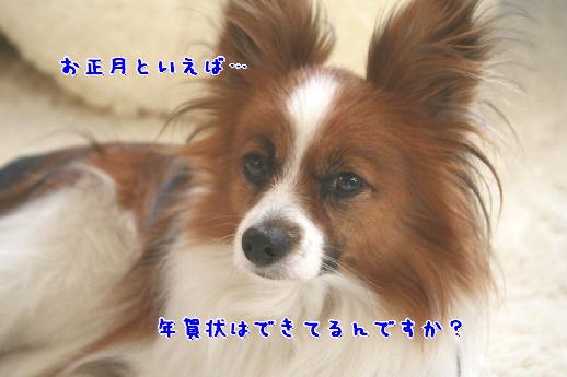 d0013149_1535480.jpg