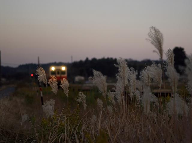 晩秋の川間駅_f0018464_1547121.jpg