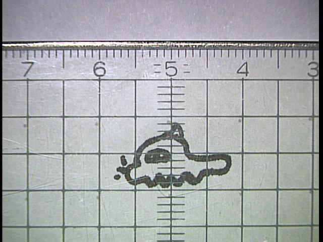 歯科医師(歯医者)はマイクロスコープ(顕微鏡)でどこまで見えるのか?やってみた。_e0004468_2374543.jpg