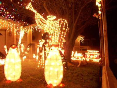 House Decoration for Christmas_e0055091_1231814.jpg