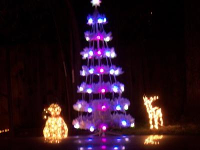 House Decoration for Christmas_e0055091_1241563.jpg