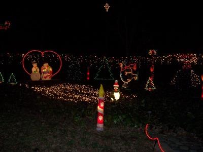 House Decoration for Christmas_e0055091_1242916.jpg
