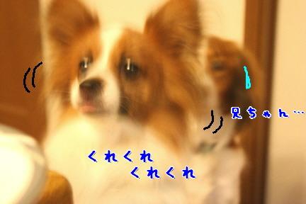 d0013149_224392.jpg