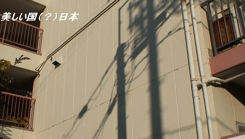 「DDNK」関西支部報告書(Vol.8)     2007年12月30日_d0083265_22244481.jpg