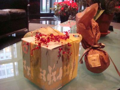 友人からのクリスマスプレゼント_d0100880_231816.jpg
