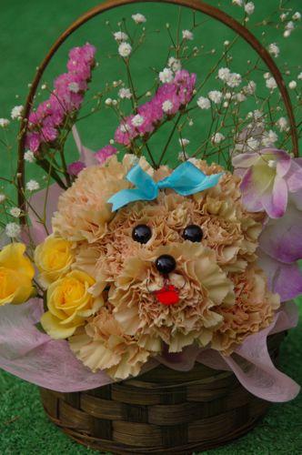 花のハナ_a0037910_2319168.jpg