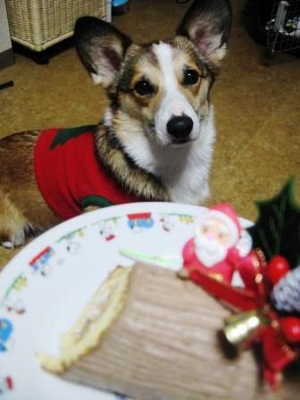 我が家でクリスマス~♪_f0155118_0181016.jpg