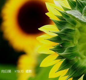c0136933_18165687.jpg