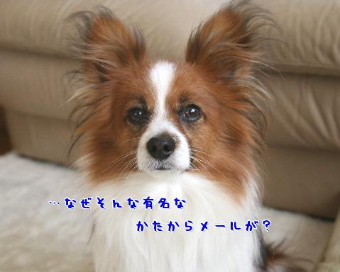 d0013149_221427.jpg