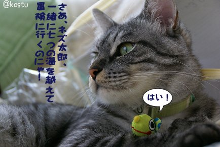 a0039366_1314532.jpg