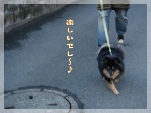 b0078073_2252169.jpg