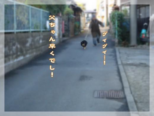 b0078073_22525955.jpg