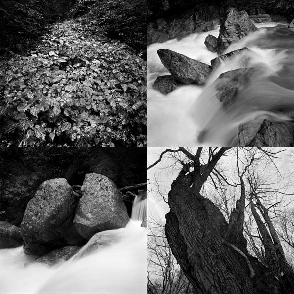 写真展「荒川源流・水の回廊より」_b0007284_19225814.jpg