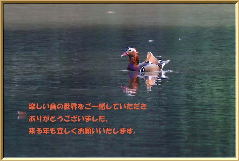 f0022486_21181821.jpg