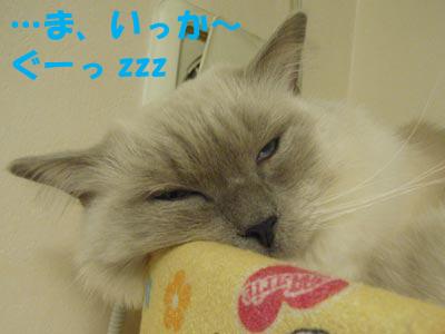 2007年12月28日(金)_f0014893_13484671.jpg
