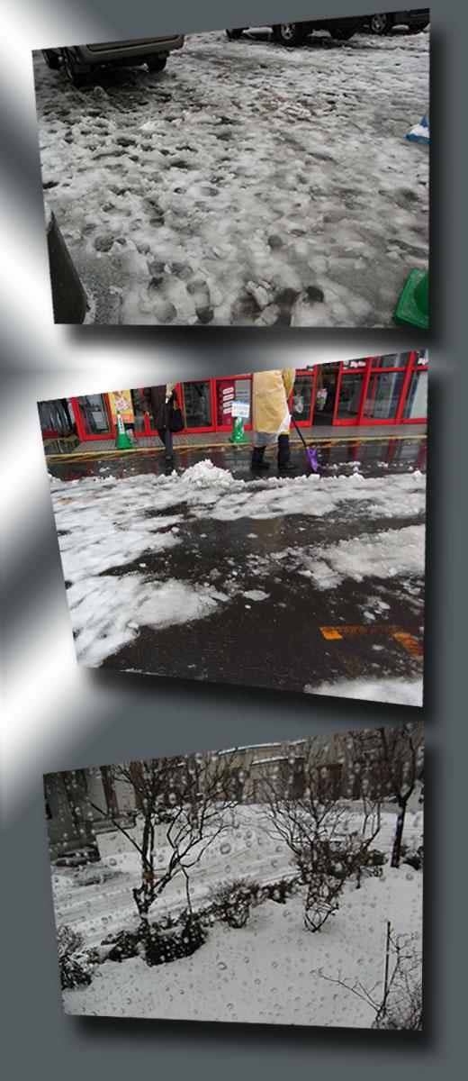 雪のち雨_b0019313_1736135.jpg