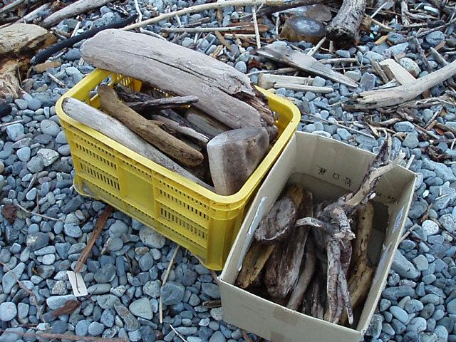 再び、薪取りに海岸へ_c0010936_1726714.jpg