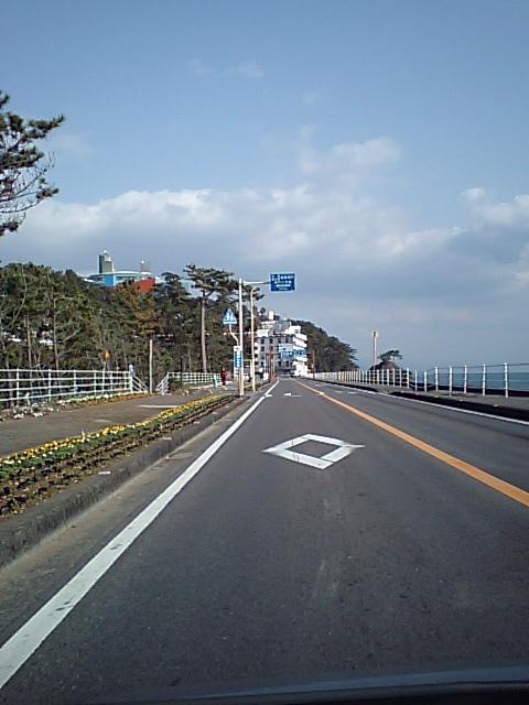 桂浜花海道を東へ_a0077663_17162733.jpg