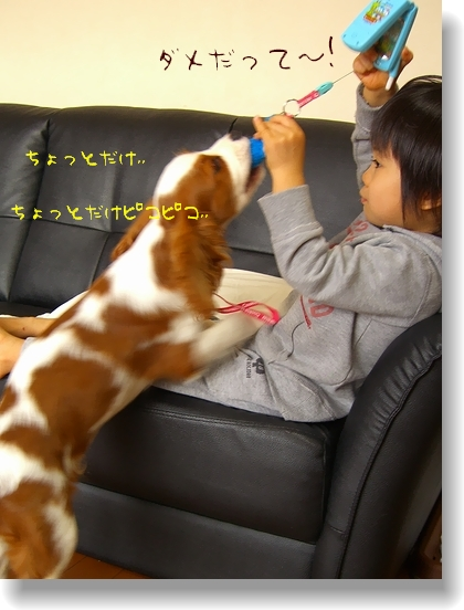 c0040201_20121050.jpg