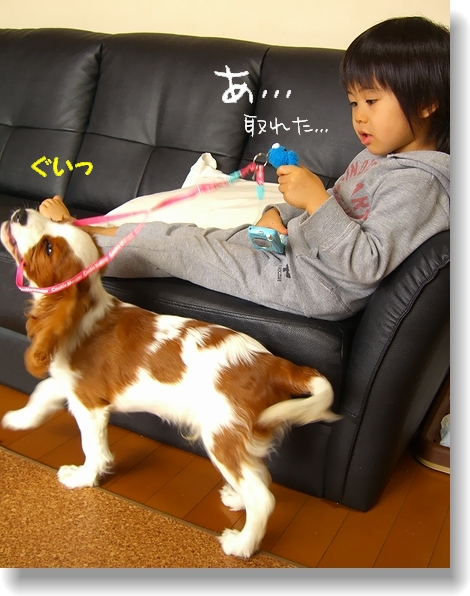 c0040201_20122114.jpg