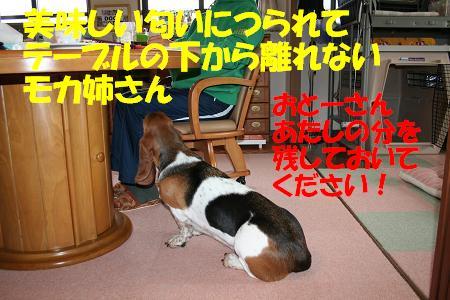 f0121712_1146170.jpg