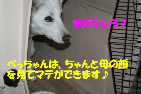 f0121712_11473598.jpg