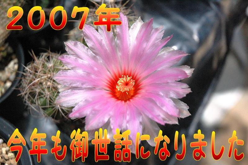 d0118616_12191136.jpg