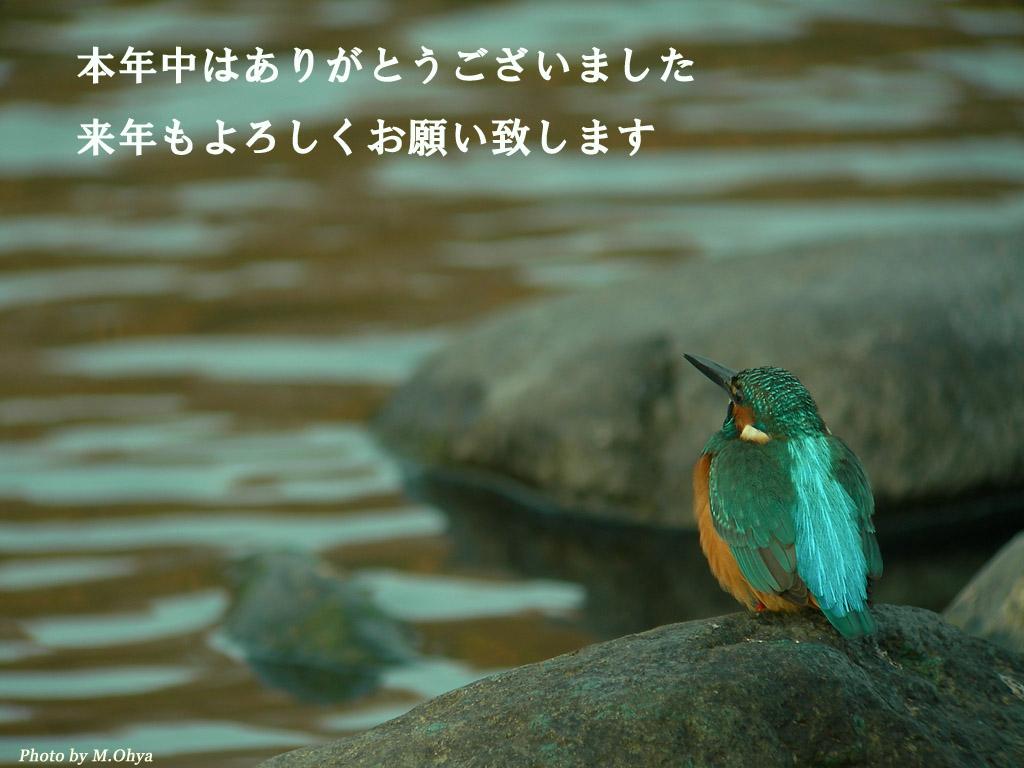 f0003418_2149611.jpg