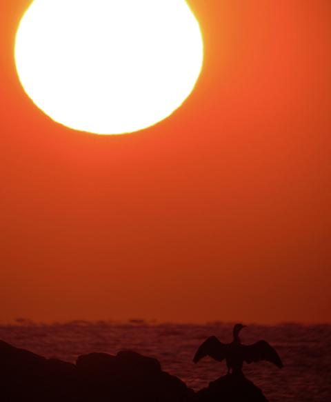 今年最後の夕陽_d0074828_2345231.jpg