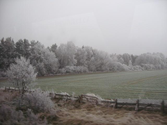 チェコからウィーンへの道で遭遇した素敵なもの_d0101846_15354528.jpg