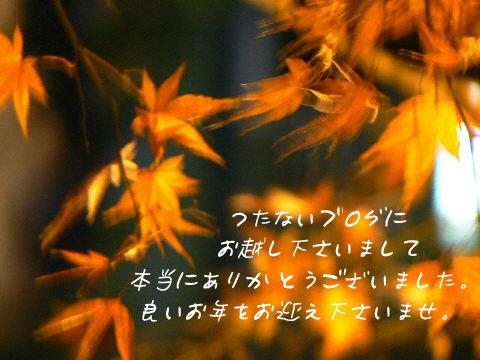 b0082747_8345272.jpg