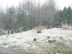 雪です!_f0019247_11153936.jpg