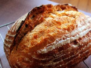 東京の小麦でパンを焼く_c0110869_2326456.jpg