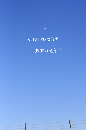 d0045474_22192631.jpg