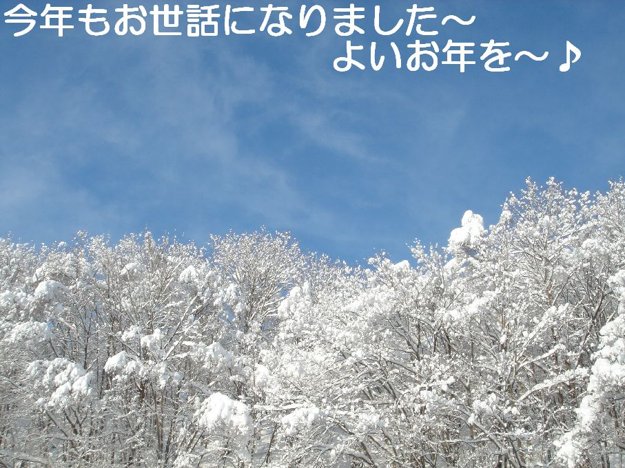 e0048582_17345465.jpg