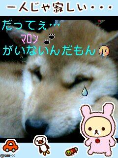 c0138720_035766.jpg