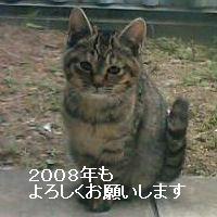 f0159039_1941457.jpg