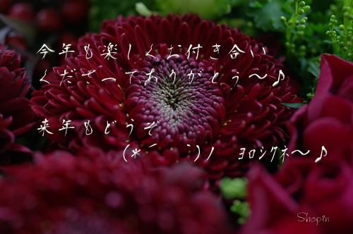 e0081973_1637263.jpg