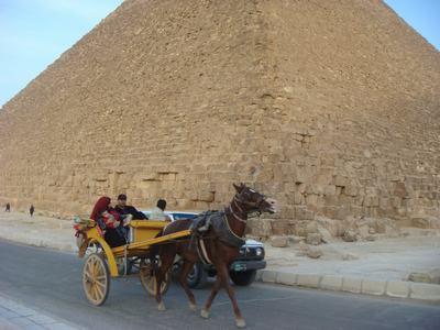 ピラミッドとラクダ_d0100880_6102682.jpg