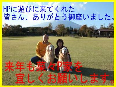 d0118592_16405210.jpg