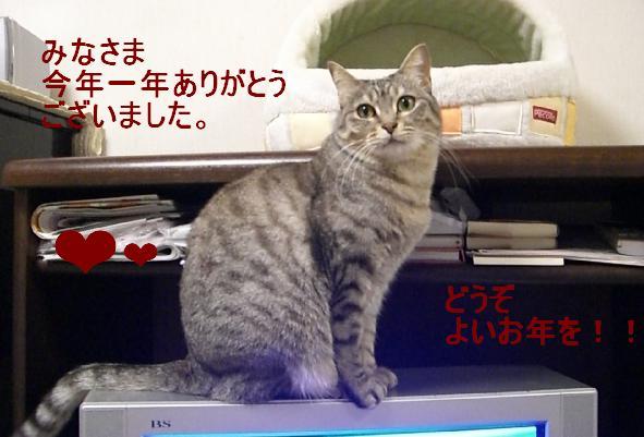 f0121293_924188.jpg